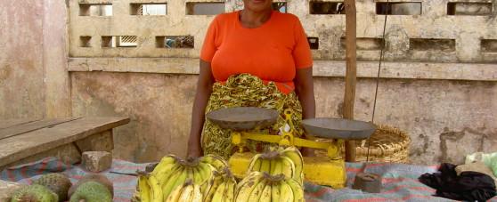 Michel HAMON l'école de la microfinance formation de formateurs en éducation financière